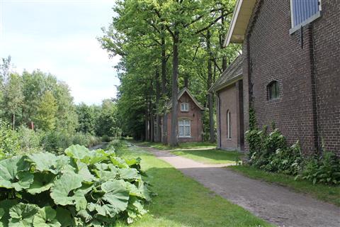14-05-25_MMCN_Brabantrit_069.jpg