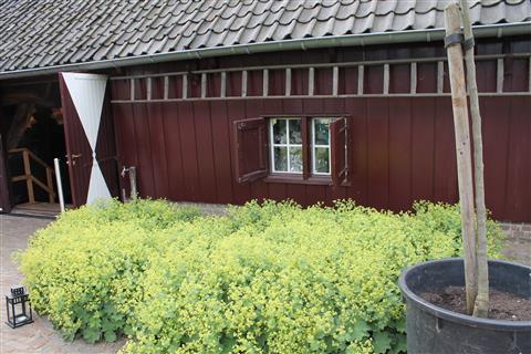 14-05-25_MMCN_Brabantrit_211.jpg